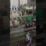 Máquina de enchimento líquida da garrafa pequena de 4 cabeças