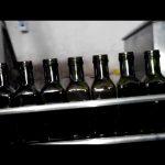 enchimento de garrafa de óleo linear completo automático de 6 bicos de azeite